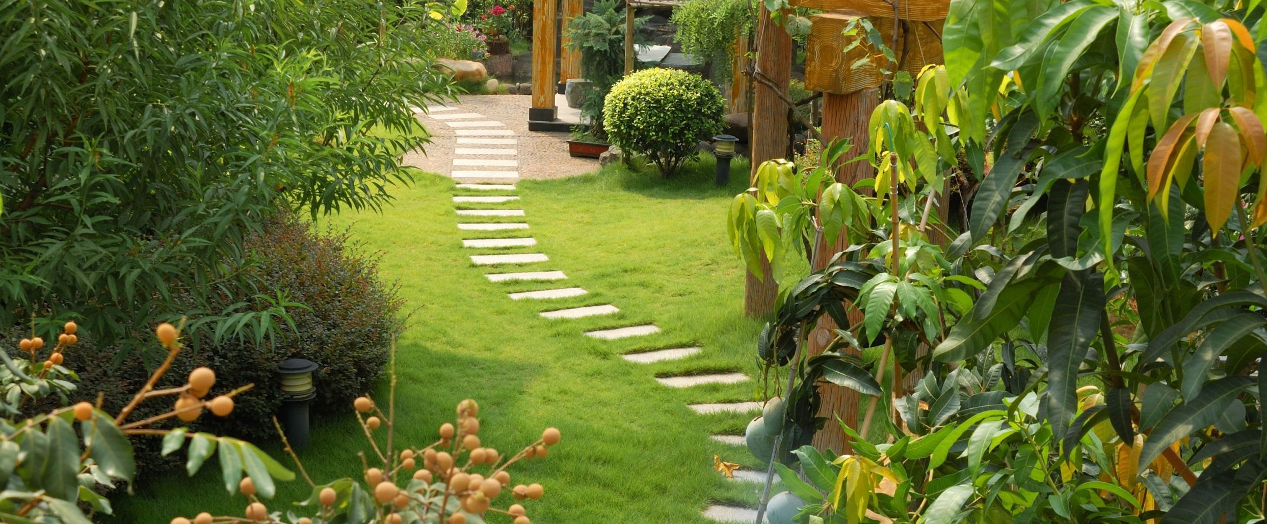 Garden Design and Tips